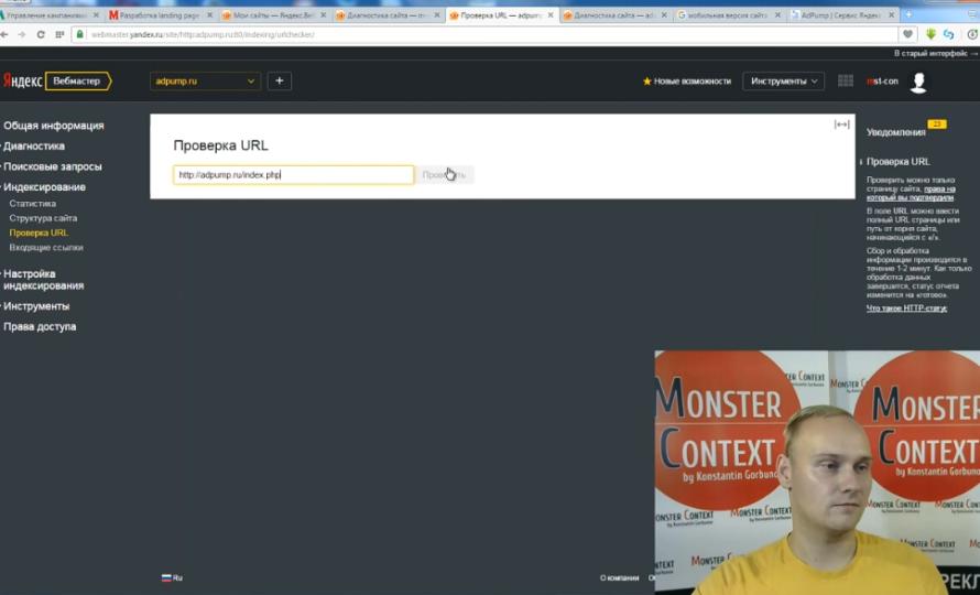 Яндекс Вебмастер 2.0 — обзор новых инструментов - Проверка url